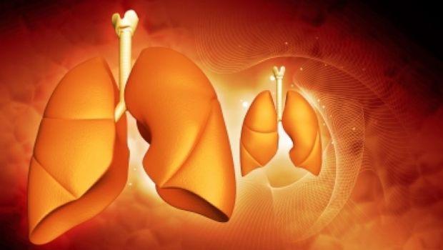 poli-paru